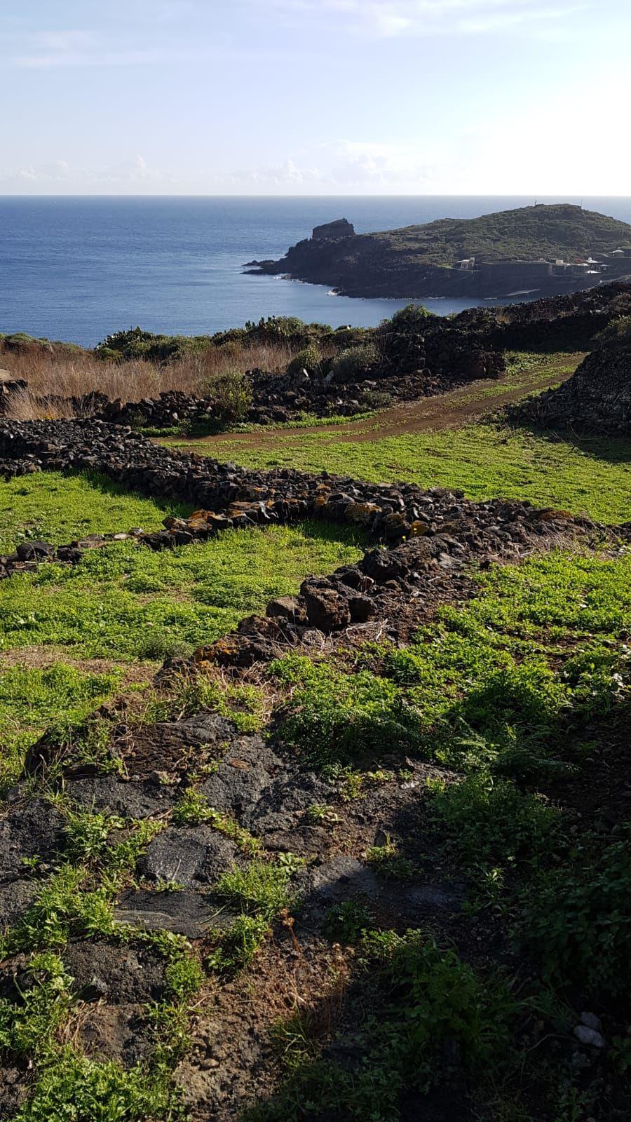 Terreni all'asta a Provincia sconosciuta - foto 1
