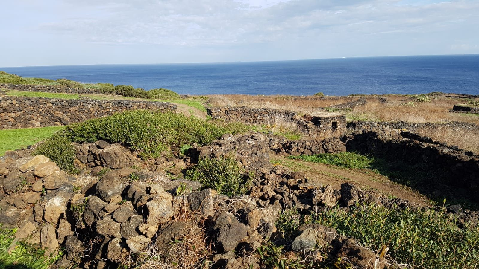 Terreni all'asta a Provincia sconosciuta - foto 2