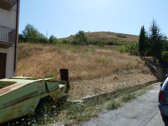 Terreni all'asta a Palermo - foto 0