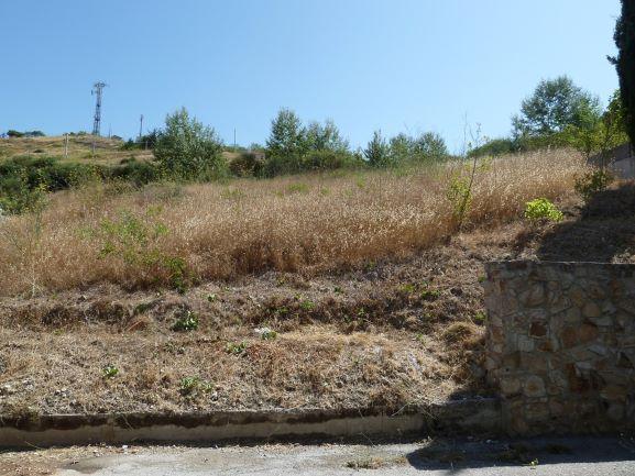 Terreni all'asta a Palermo - foto 1
